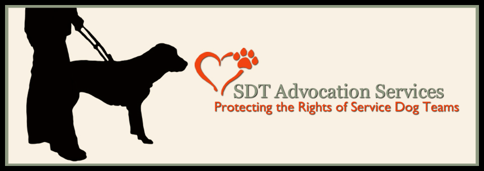 SDT Advocation Services